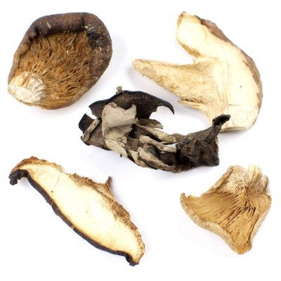 Forest Blend Mushrooms