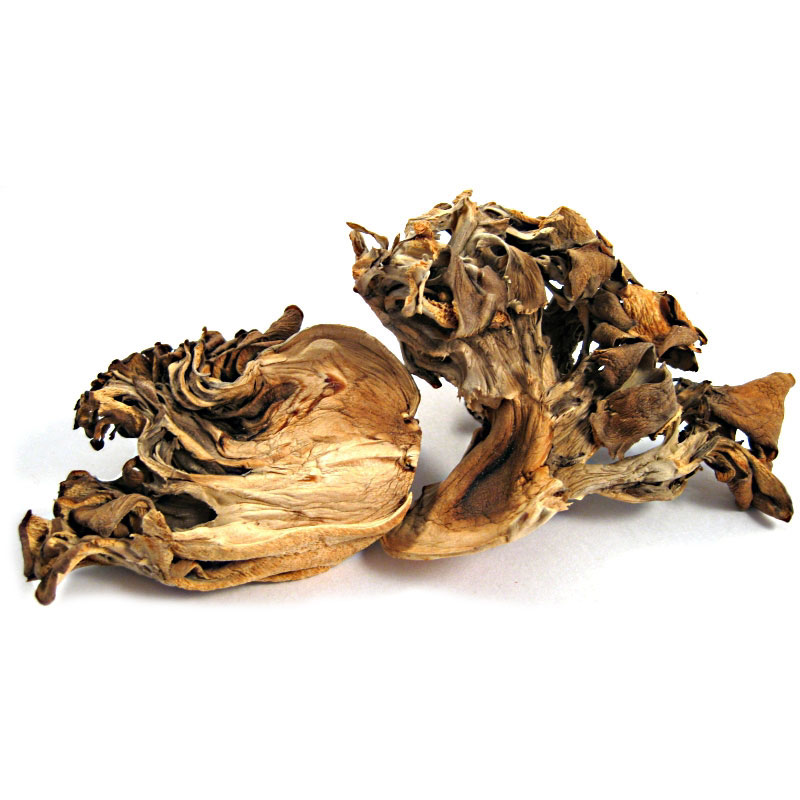 Dried Maikate Mushrooms