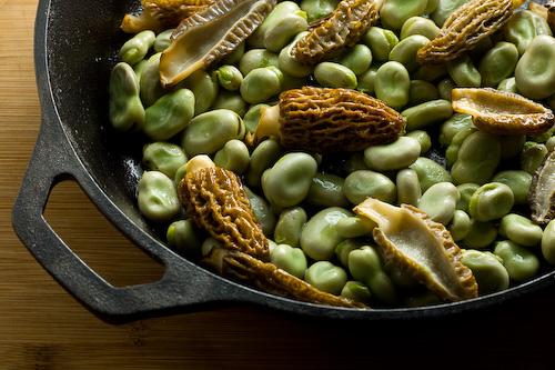 morel-mushroom-fava-beans-recipe